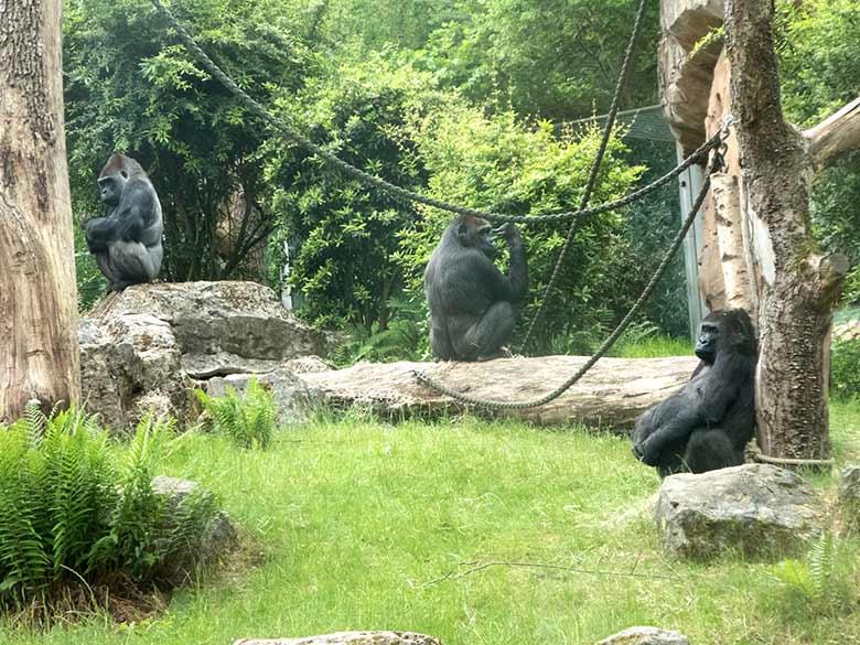 Zoo Wuppertal Preise 2021